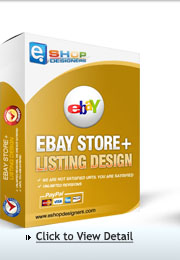 ebay store design